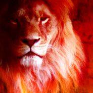 Lion's Gate Initiate Fire Candle Ritual | Aug. 08, 2020